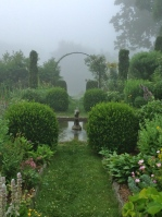Morning mist - pixieperennials@gmail.com