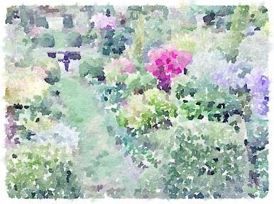 Waterlogue app | pixie perennials