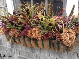 Garden shed window box 2014