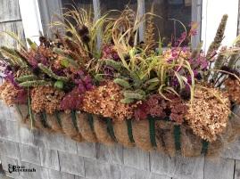 Garden shed window box 2014