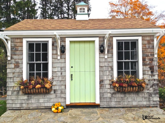 Garden shed window boxes