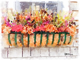 Garden material used to create fall flower arrangement - pixieperennials.com