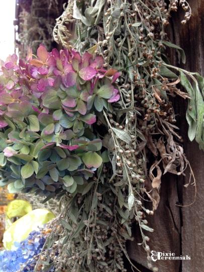Side view of Hydrangea & Artemisia fall wreath. pixieperennials.com