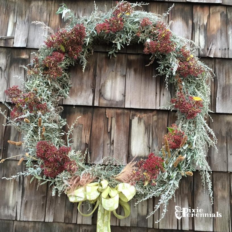 Artemisia wreath with Heptacodium miconioides -pixieperennials.com